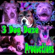 This is My main Company, 3 Dog Daze Productions. Social media management,  my facebook page, https://www.facebook.com/3dogdazeproductions?ref=hl