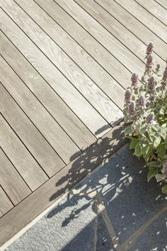 Small Garden Pergola, Backyard Pergola, Pergola Plans, Diy Patio, Black Pergola, Modern Pergola, Deck With Pergola, Vinyl Pergola, Metal Pergola
