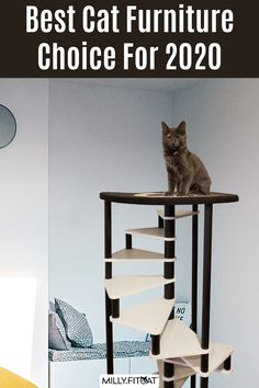 Does your cat dream of getting a new Cat Tree? Perhaps a Cat Furniture upgrade is in order. The MillyFitcat Spiral Cat Stairs were designed to keep your active pet entertained. The steps are spaced at the optimal height for your pet to have fun scampering up and down. A Pet Bed at the top offers kitty a place to hang out and relax. Cat trees can be functional and look good too. Click or Claw over to our Etsy shop for a detailed description and other sizes. Meow! #cattree #catfurniture #cattower Vesper Cat Furniture, Cat Climber, Cat Stairs, Cat Exercise, Cat Perch, Cat Trees, Coordinating Colors, Cat Face, Cool Cats