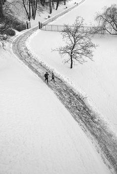 Life goes on. Winter Joggers, Trondheim, Norway ☮k☮ Winter Love, Winter Snow, Winter White, Winter Magic, Winter's Tale, Winter Scenery, Snowy Day, Snow Scenes, Winter Beauty