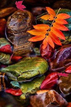 Осень,камни,вода