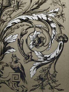 Ornamental scroll drawing