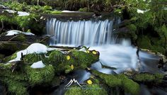 While travelling around the south west of America a couple of years ago a friend showed us around his home town in Utah. I came across this awesome little creek with snow sitting nicely on the moss. I had to get my feet wet for this one and boy was it cold in that water.  Image Title: Snowy Creek Location: Utah USA Camera: Nikon D3x Lens: Nikkor 16-35mm f/4  Go to website to view full portfolio and pricing. Prints can be shipped world wide. GO TO LINK IN BIO  PHOTO WORKSHOPS: Book a…
