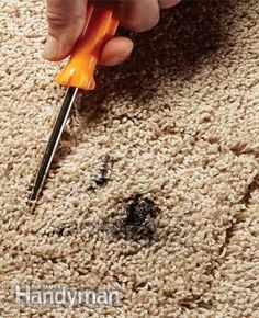 Carpet Maintenance Tips 3 Quick Carpet Fixes Carpet