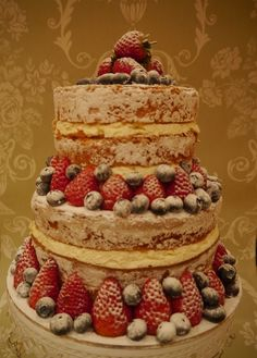 'naked cake' angel cake, without all the cutting up- real whipped cream on the side w/ stylized rose petals- yep...