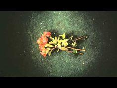 Three Flowers Songs: I Hide Myself - Eric Whitacre (1992)