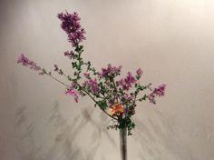 2017.5.18 生け花のおけいこ。上の花器。ライラックはこの時期だけ。ガラスの器で初夏の涼やかさを出す。ガーベラを入れることで、下とつながりをつくる。