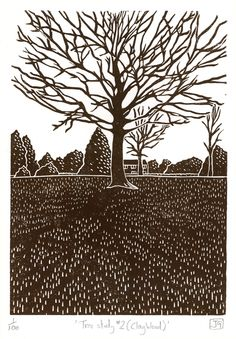 This guy does really cool work. James Green Tree Study No.2 (Clay Wood) linocut print