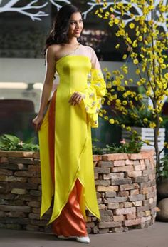 Áo dài cách điệu - CT602 This dress is very special it's like a monk coat, just got one hand :)