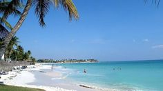 Eagle Beach  Localizada en Aruba, esta playa promete darte una de las mejores experiencias de tu vida, la ser conocida como una de las playas más limpias del Caribe, Eagle Beach es perfecta para realizar deportes acuáticos.