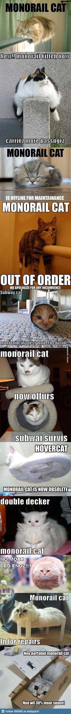 모노레일 고양이들 | Daum 루리웹
