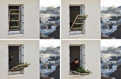 hanging garden (10 FOTO, 1 VIDEO) | BLOG TELUS