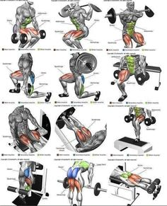 Mega Strong Legs Workout