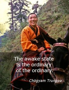 """The ordinary of the ordinary ~ Chögyam Trungpa http://justdharma.com/s/2vo8l  The awake state is the ordinary of the ordinary.  – Chögyam Trungpa  from the book """"Transcending Madness: The Experience of the Six Bardos"""" ISBN: 978-0877736370  -  http://www.amazon.com/gp/product/0877736375/ref=as_li_tf_tl?ie=UTF8&camp=1789&creative=9325&creativeASIN=0877736375&linkCode=as2&tag=jusdhaquo-20"""
