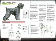 Black Russian Terrier                                                                                                                                                                                 More