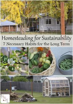 Homesteading for the long term requires some unique skills & the attitude to make it work, it's all about homesteading for sustainability. Homestead Farm, Homestead Gardens, Homestead Survival, Survival Skills, Homestead Living, Survival Prepping, Emergency Preparedness, Homestead Layout, Survival Shelter