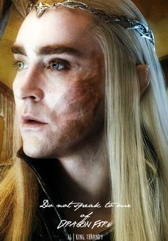 thanks photoshop for aiding me with applying thranduil's scar