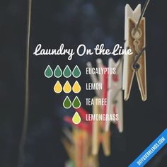 Laundry On the Line - Essential Oil Diffuser Blend