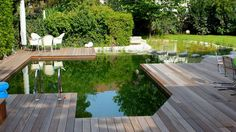 An alternative to chlorine pools, the BioTop Natural Pools use plants to keep water clean and clear.