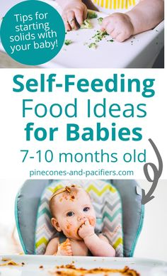 Feeding your baby doesn't have to be difficult. If you are just beginning baby-led weaning, have a fairly experienced eater, or if you started with purees and are transitioning to table foods, this post is for you! Check out these 24 baby self-feeding food ideas for young eaters 7-10 months old. This is everything my baby was eating at 8 months old and can easily be adapted to fit any eater. #babyledweaning #selffeeding #babyfood #7monthsold #8monthsold #9monthsold #10monthsold Table Foods For 9 Month Old, 7 Month Old Baby Food, 10 Month Old Baby Activities, Infant Activities, Baby Month By Month, Baby Self Feeding, Baby Feeding Schedule, Baby Schedule, 10 Month Old Schedule