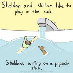 Sheldon and William like to play in the sink.  Sheldon's surfing on a popsicle stick.
