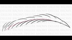 Deluxe Brows® Microblading Eyebrows Rainbow Pattern - Training / Tutorial