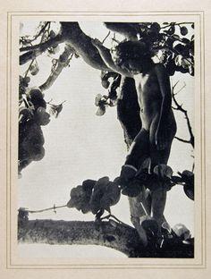 Nell Dorr (1893-1988)