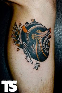 Traditional anatomical heart