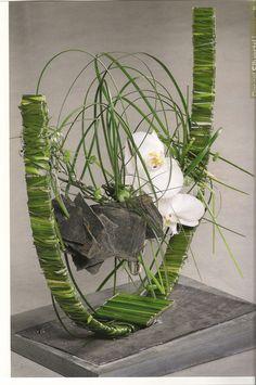 Curve Orchid | Floralie Kay
