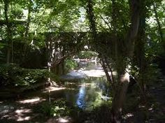 le pont du Gué Trunks, Bridge, Drift Wood, Tree Trunks