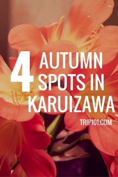 Karuizawa's autumn begins a little earlier than Tokyo's, and every year the…
