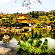 Day 9: Devote the day to northern Kyoto, full of quiet backstreets and incredible temples and gardens, including Kinkaku-ji and Ryoan-ji. www.boutiquejapan.com