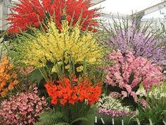 Cut flower distance education | Flower Farming Online Course