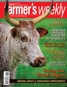 20-27 December - last issue of #FWSA for the year 2013.