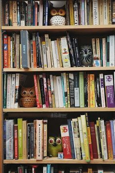 wise owls gettin wiser <3 ||| bookshelf humour