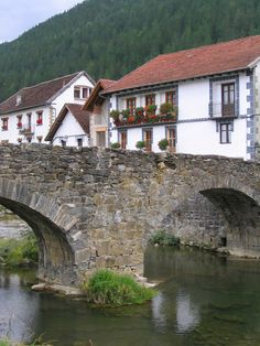 Stone bridge and houses in Ochagavia~Spain