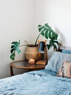 Blue bed linens, a philodendron in a basket, and black and wood task lamp on the round glass nightstand.