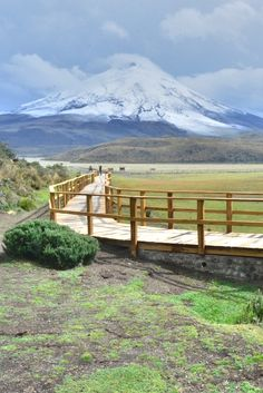 Cotopaxi Volcano, Ecuador - Explore the World with Travel Nerd Nici, one Country at a Time. http://TravelNerdNici.com