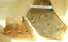 Sherd with thumb marks of the potter, Rowlands Castle, discovered at Colemore by Liss Archaeology Group