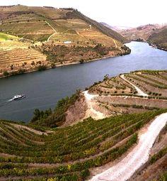Vale do Douro emoldura uma das regiões mais bonitas do mundo