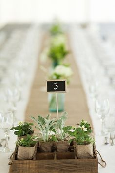 beautiful succulents.Nice and rustic table decoration idea.