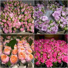 En Bruflor es lunes y han llegado preciosas flores de Holanda para llenar tu floristería de color y alegría.