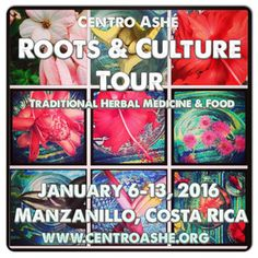 Roots & Culture Tour Traditional Food & Herbal Medicine Journey Manzanillo, Talamanca, Costa Rica January 6-13, 2016 (7 nights)  With Co-Facilitators Molly Meehan & Ayo Ngozi