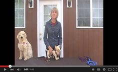 Don't be scared to take your dog to public, crowded places.  Sue demonstrates how effective the Zen Walker is by keeping your dog close to you. #petsafety