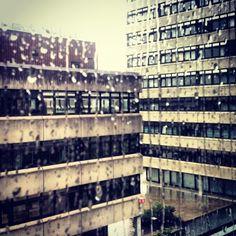 Klimawandel am Stuttgarter Pressehaus:  http://henriklerch.wordpress.com/2012/06/04/klimawandel-am-stuttgarter-pressehaus/