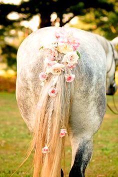 Wedding horse flower crown tail Toni Kami❀Flowers in their coats❀-This would be cute until he pooped on it.