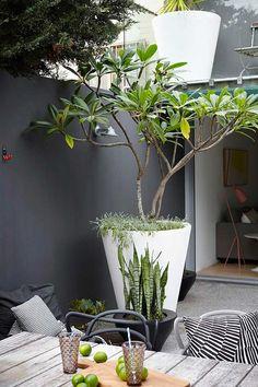 Le noir nous séduit souvent en décoration d'intérieur. Voici quelques idées pour apprendre à l'utiliser aussi pour nos jardins, terrasses et balcons !