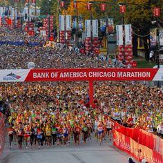 Run the Chicago Marathon in 2012!