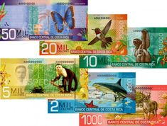 Costa Rican money is so vibrant and colorful. It really brings your attention to what you could have in your hand. The fact that the animals found in the area are printed on the money shows how much these creatures mean to the citizens. Much like Canadian currency, the individual bills can stand alone, but they look like they belong together.