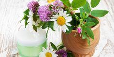 ÚVOD DO VÝROBY DOMÁCÍ KOSMETIKY část 3. Soap, Homemade, Table Decorations, Makeup, Plants, Blog, Diy, Home Decor, Homemade Home Decor